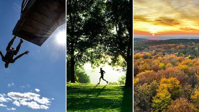 Höst, sommar, sol, solsken, värme, bada, löv