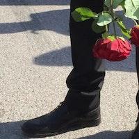 Rosor som hålls upp och ner vid ett kostymklätt ben.