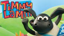 Timmy lamm