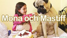 Mona och Mastiff