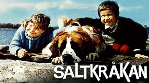 Sa Gar Det Till Pa Saltkrakan
