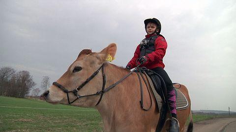 Wilma rider på kon Snäckan.
