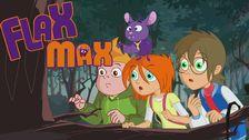 Flax Max