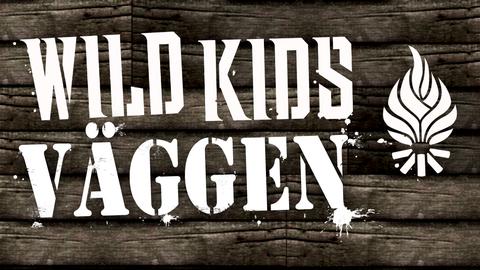 tyck till och hjälp oss fira wild kids 10 år!