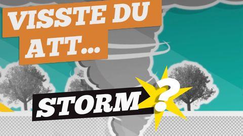 Visste du att: Storm