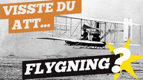 Visste du att: Flygning