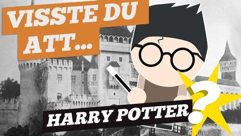 Visste du det här om Harry Potter