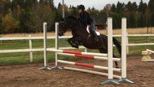 """Elna Berglund, 12: """"Jag och min ponny hoppar hinder"""""""