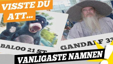 Visste du att det finns 21 Baloo i Sverige?