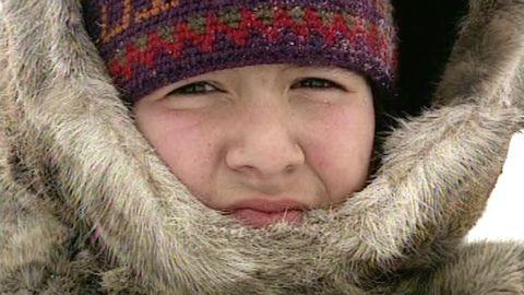 Nunavut - landet vi lever av
