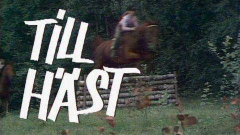 Avsnitt 1 av 13: Dressyrprogrammet Lätt B:2 och de första övningarna med hästen