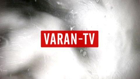 100% Varan-TV