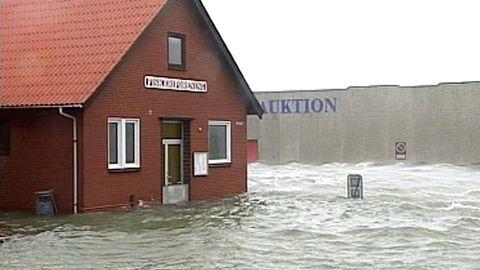 Stormen Gudrun
