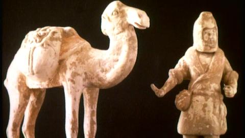Avsnitt 6 av 10: En man och en kamel