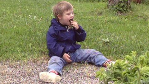Plocka sniglar och äter gräs