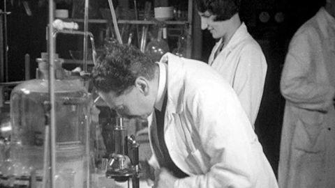 Hans von Euler-Chelpin 1929