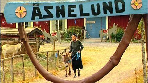 Helgmålsringning från Åsnelund