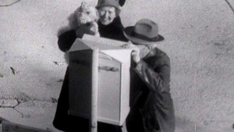 Dolda kameran: Den talande brevlådan