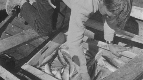 Avsnitt 4 av 6: John och Nikka fiskar röding och turister