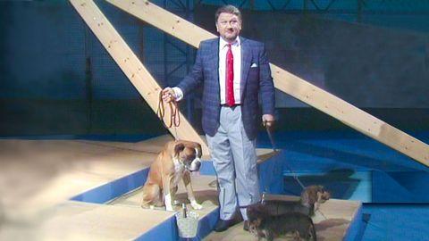 Siewert och hundarna