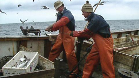 Sista backelänken - 100 år av svenskt långafiske