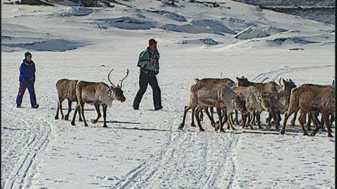 Expedition vildmark