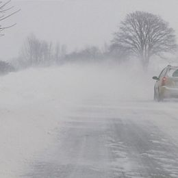 Väderåret 2010