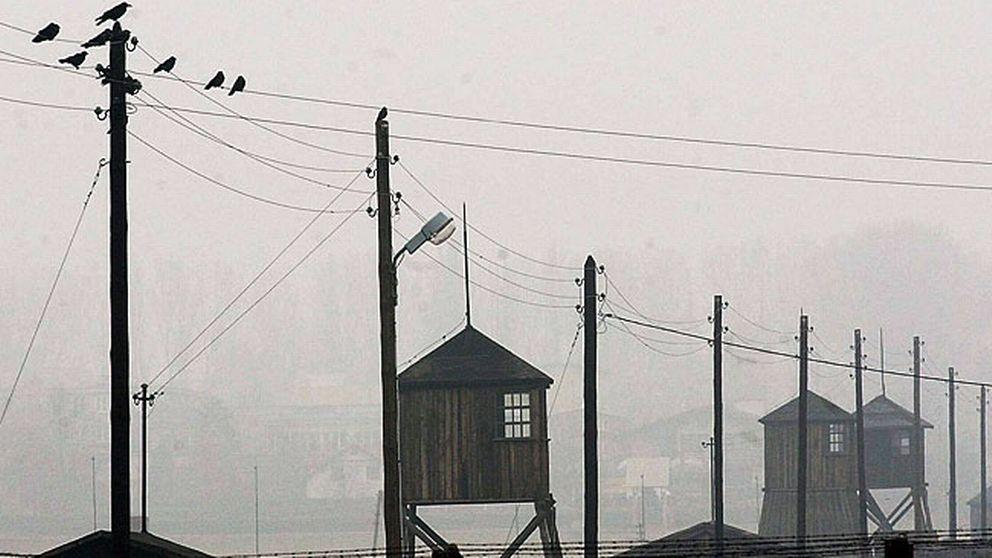 Förintelselägret i Majdanek