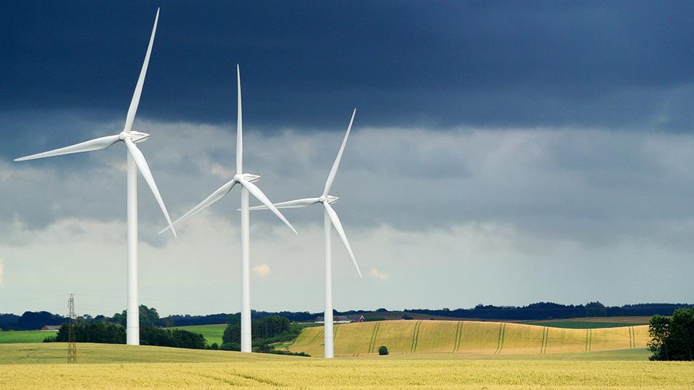 Majoritet vill ha subventioner till vindkraft