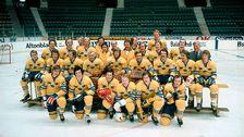 Ishockey - Öppet arkiv