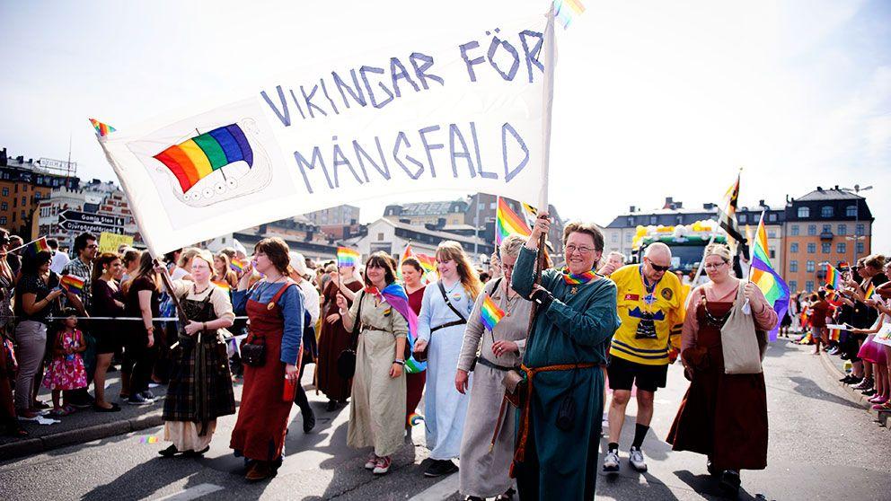 """""""Vikingar för mångfald"""" gick i Pridetåget 2014."""