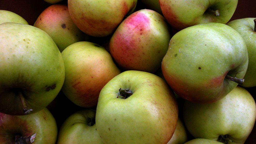 Äppeljuicerna från God morgon och Coop x-tra innehåller mer av giftet patulin än vad som är lämpligt för små barn.