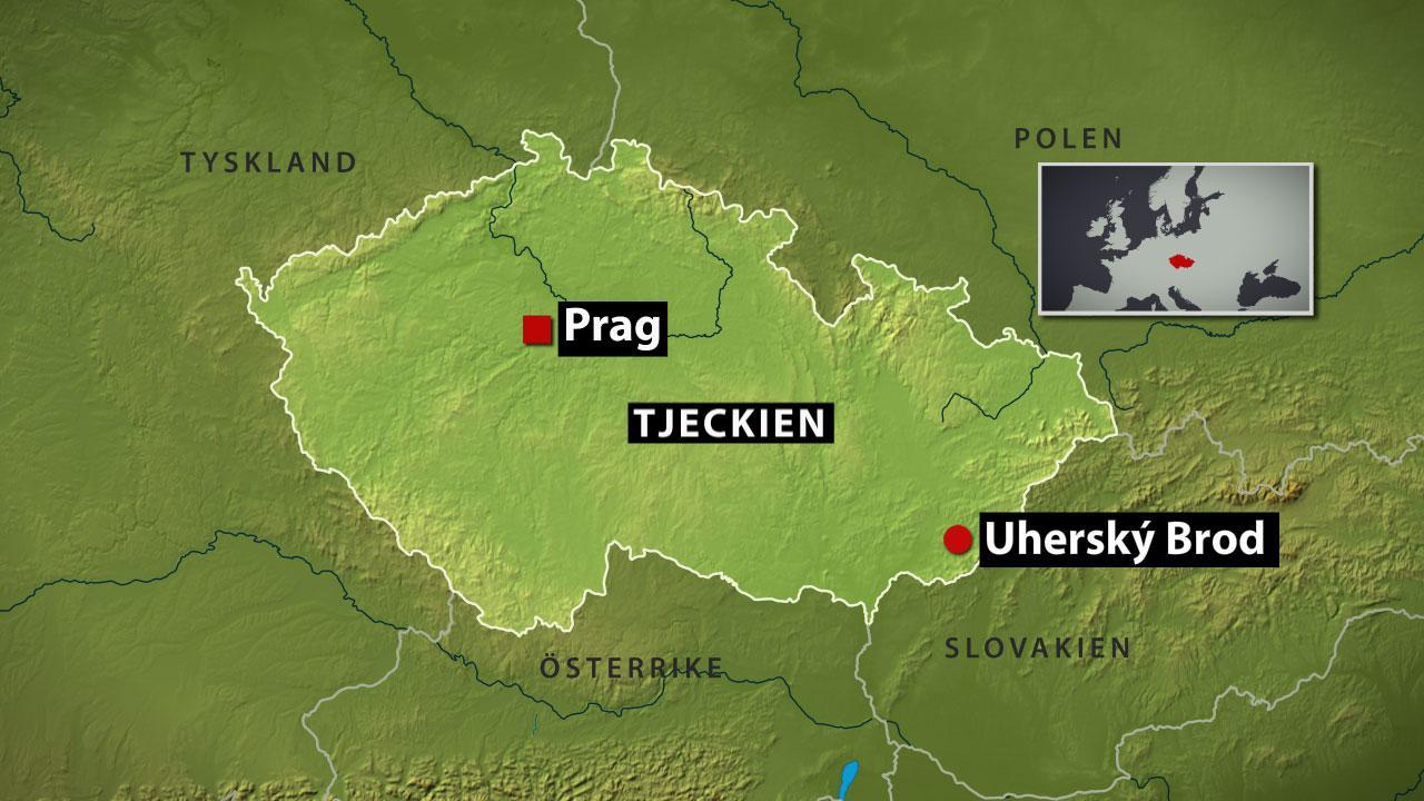 Atta doda i skottdrama i tjeckien