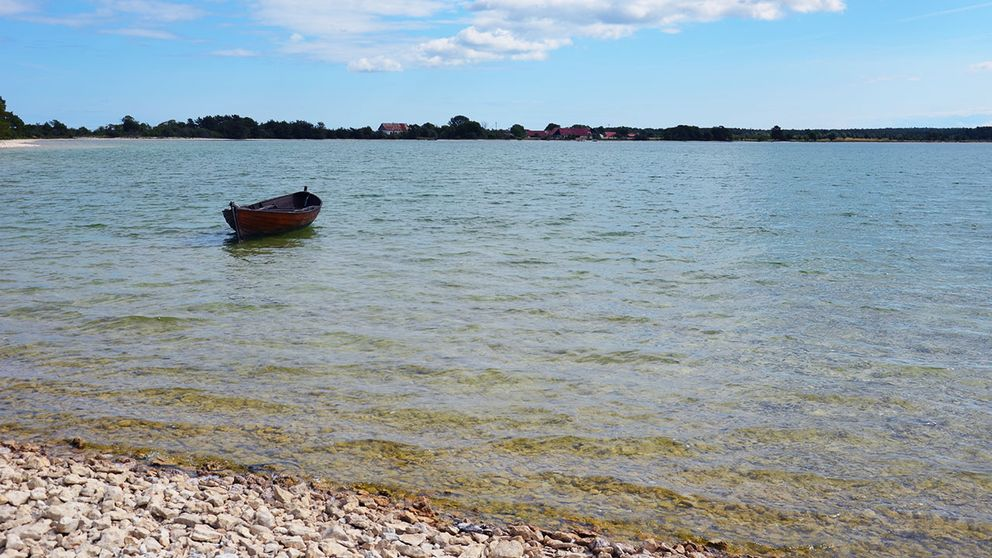 Bästeträsk från stranden i nordväst mot Ar.