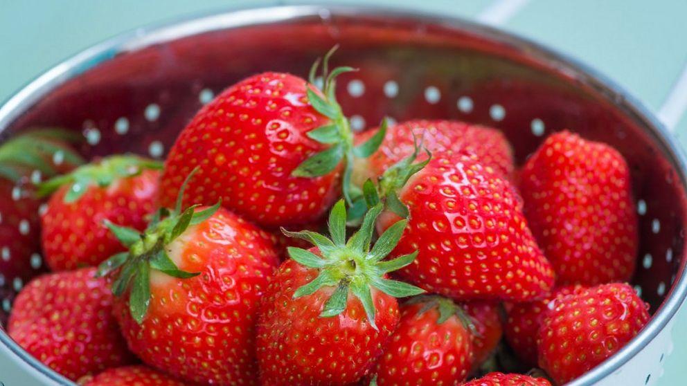 chokladdoppade jordgubbar recept