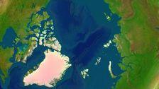 Illustration av Arktis utan havsis.