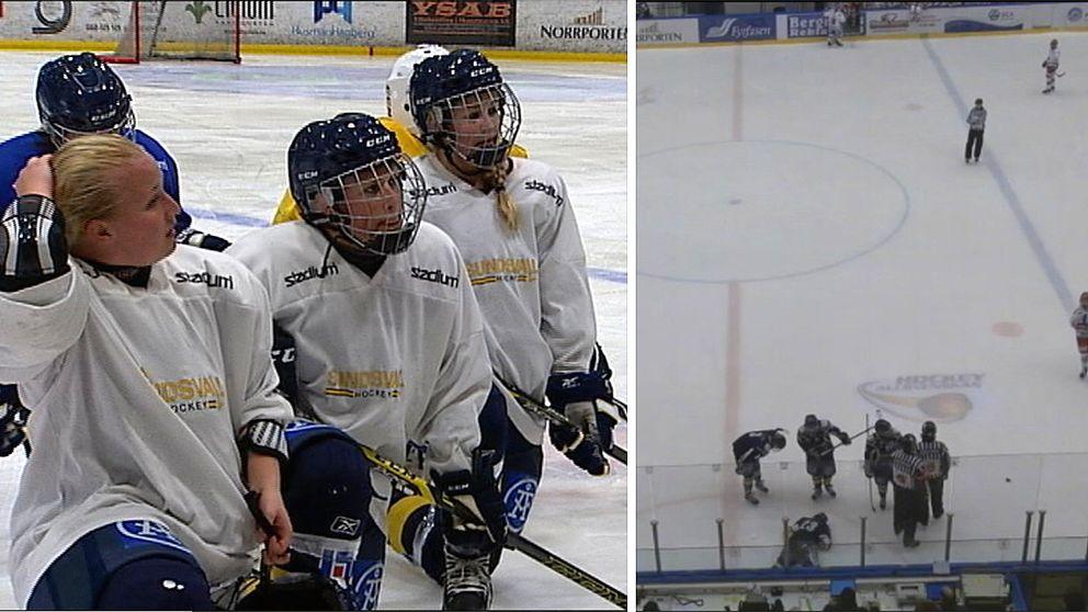 Spelare i Sundsvall Wildcats.