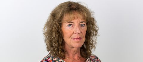Margit Silbersteing, inrikespolitisk kommentator