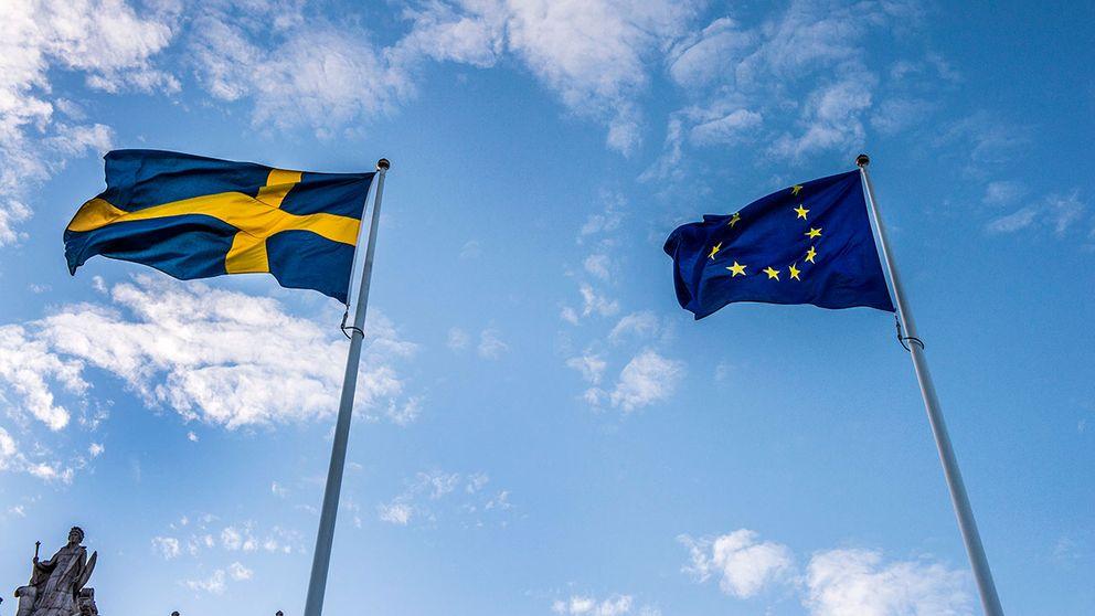 Svenskarna betalar näst högst EU-avgift utslagen per invånare när bidragen räknats av.