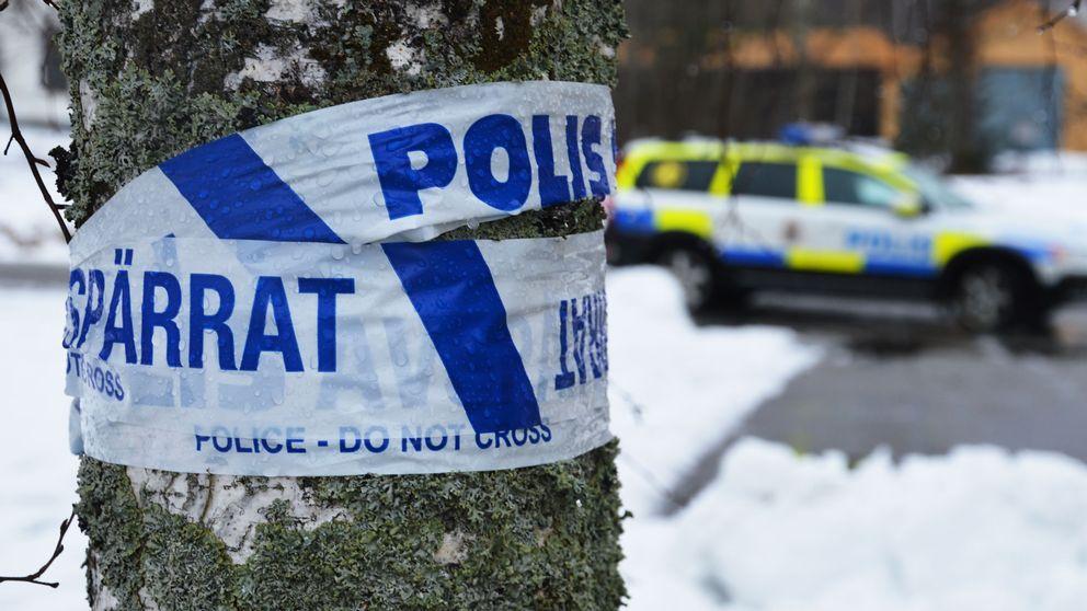 Polisbil vid björk med avspärnring