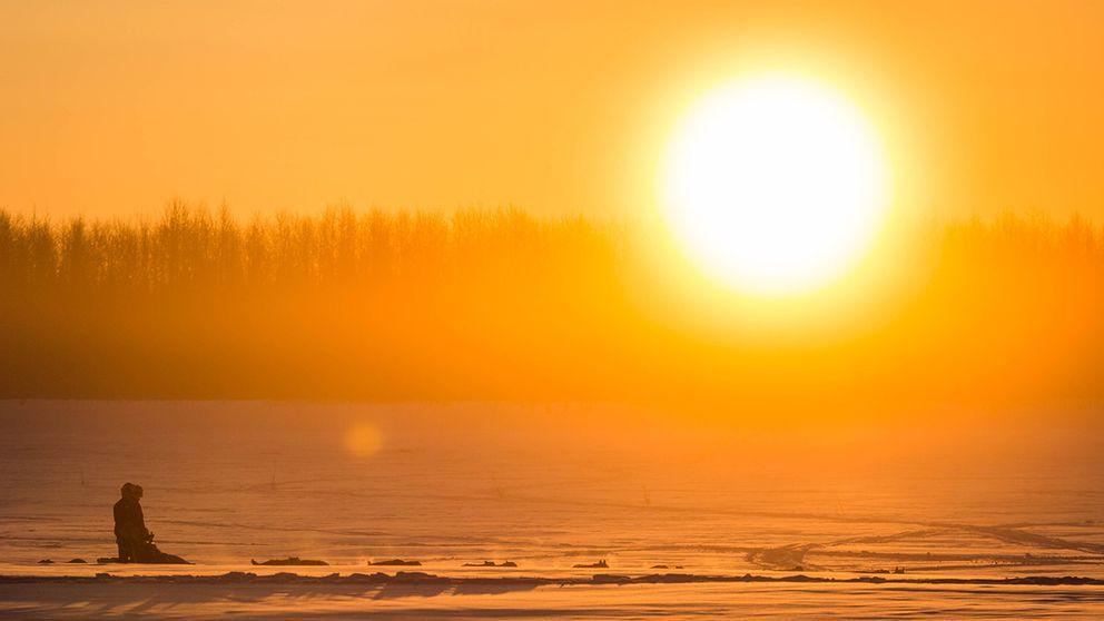 Stor sol lyser över snövidder i Alaska.