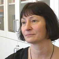 Bild på läkaren och docenten Lisbeth Slunga Järvholm vid arbets- och miljömedicin i Umeå.