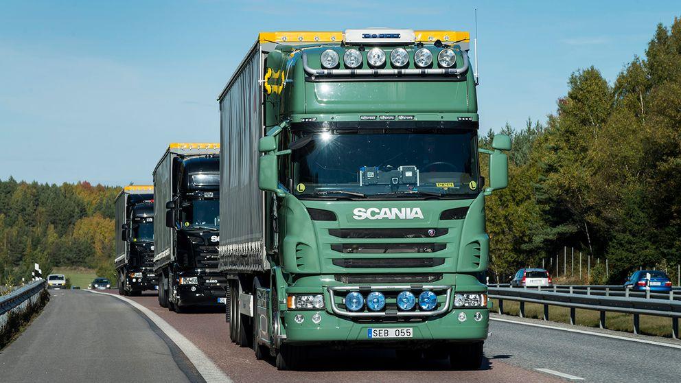 Lastbilar i konvoj