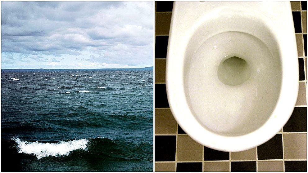Östersjön och en toalett.
