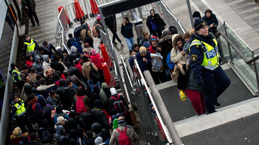 Högst 100.000 asylsökande i år, tror Migrationsverket.