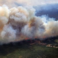 Skogsbranden har på ett dygn växt sig tio gånger så stor som under onsdagen.