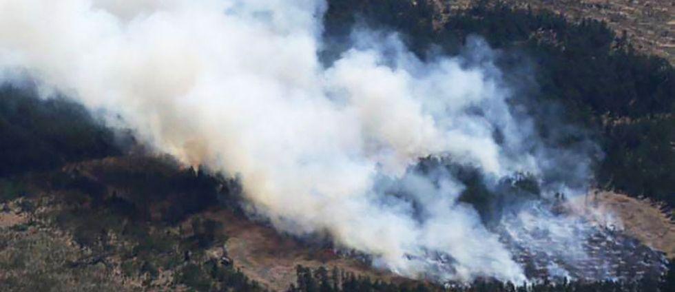 skogsbrand Gotland Vänge