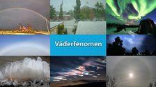 Ett urval av de olika väderfenomen som förekommer under lite olika tidpunkter på året.