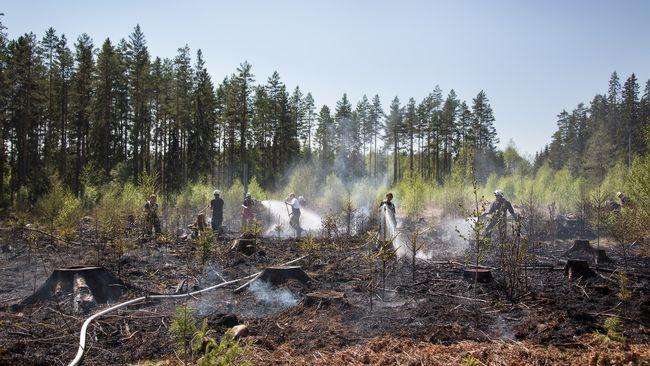 Skogsbrand harjar utanfor nassjo