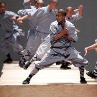 """Koreografen Sidi Larbi Cherkaoui (längst ned till vänster). Bilder ur hans verk """"Sutra"""" från 2008."""
